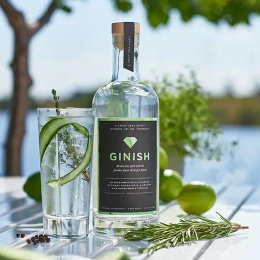 Holland & Barrett GInish
