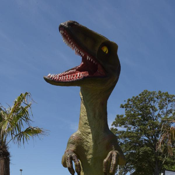 Dino Park at Westwood Cross